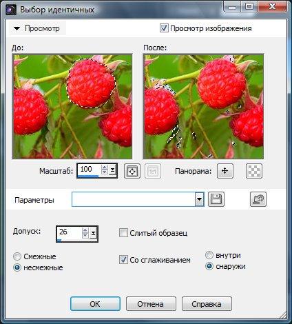 Добавление к выделению разрешенных цветов  Corel PaintShop Pro X4 автор Шитов В.Н.