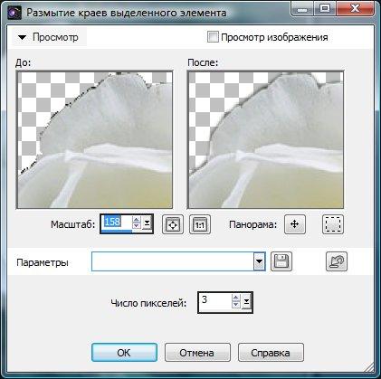 Определение параметров размытия выделения Corel PaintShop Pro X4 автор Шитов В.Н.