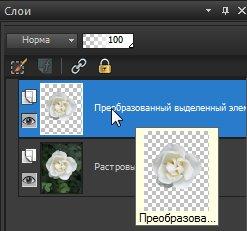 Исходный и плавающий слои Corel PaintShop Pro X4 автор Шитов В.Н.