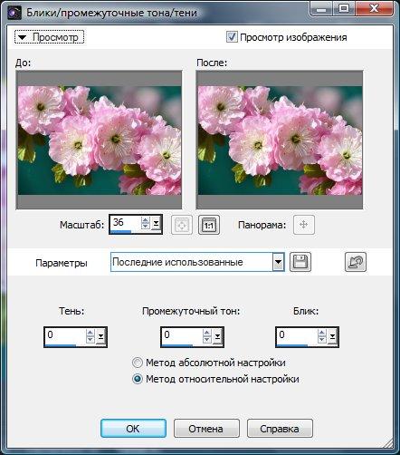 Тоновая настройка изображения Corel PaintShop Pro X4 автор Шитов В.Н.