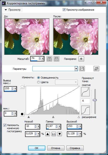 Настройка гистограммы Corel PaintShop Pro X4 автор Шитов В.Н.