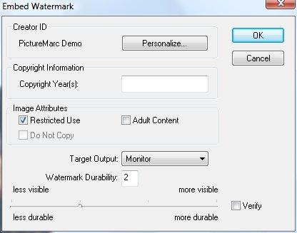 Диалоговое окно Embed Watermark