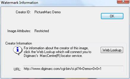 Диалоговое окно Watermark Information